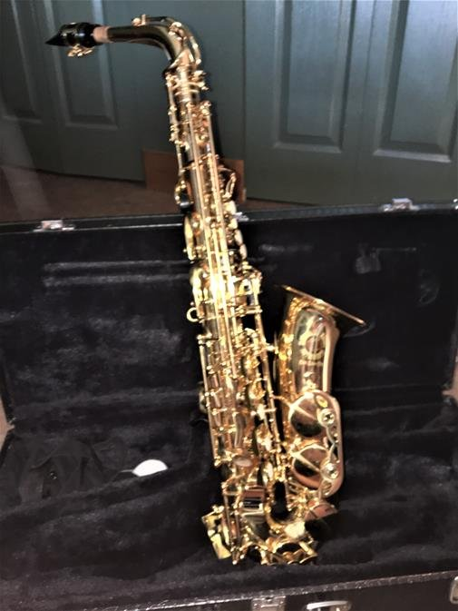 cannonball alcazar alto saxophone for sale price reduced in penticton bc. Black Bedroom Furniture Sets. Home Design Ideas